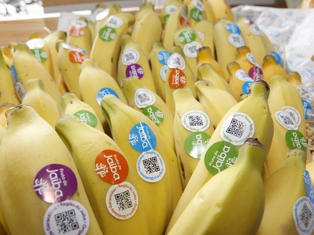 Associacao-Central-dos-Fruticultores-Bananas