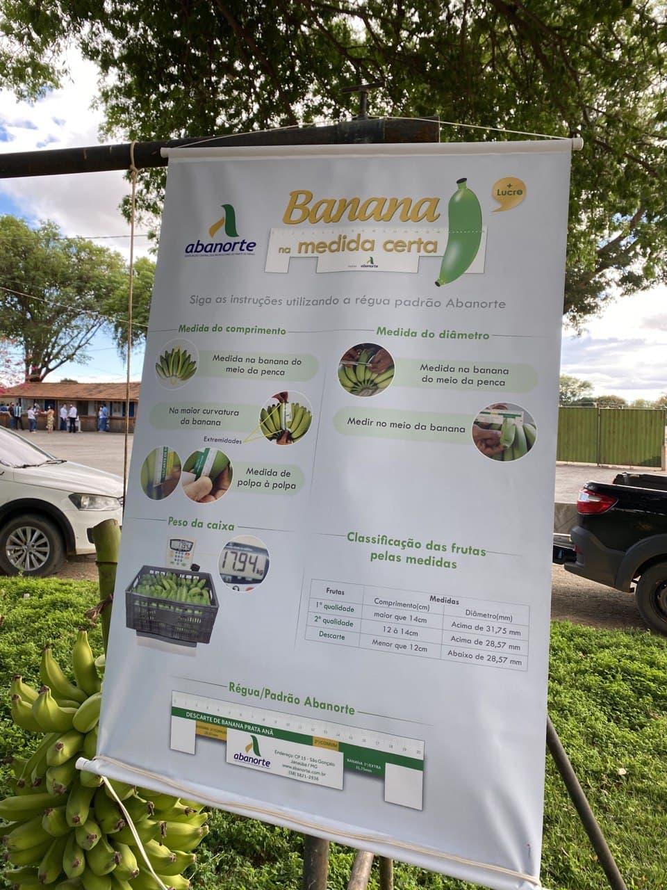 Projeto-Banana-na-Medida-Certa